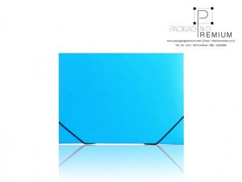 แฟ้มกล่องพลาสติก สีฟ้า